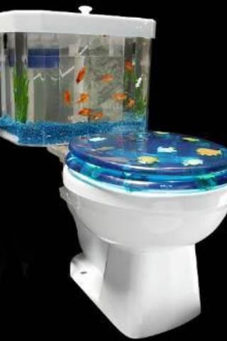 fish-tank-toilet